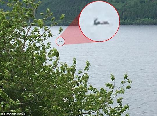 Туристы из Австралии сумели доказать существование Лох-Несского чудовища