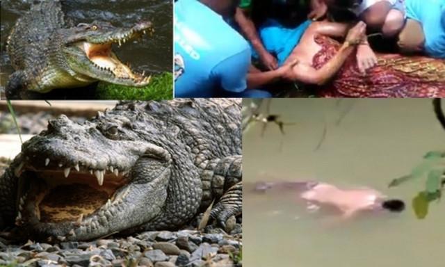 Крокодил вернул родственникам тело съеденного им мужчины