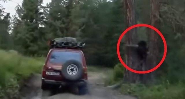 Лешего запечатлели на видео в России