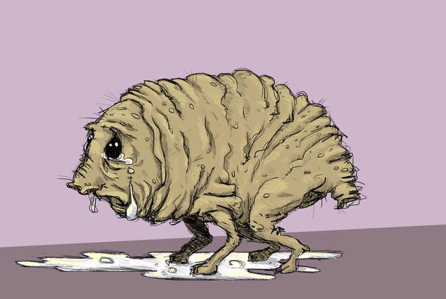 Сквонк - вероятно самый нелепый криптид из лесов Пенсильвании