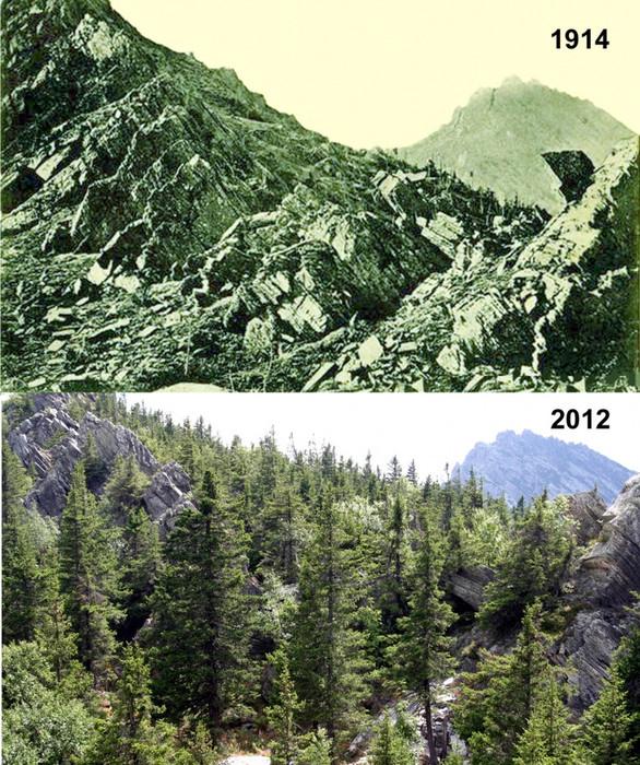 Изменение растительности на Таганае. Митькины скалы