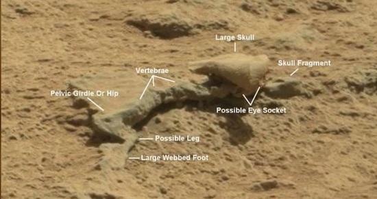 Марсианские находки виртуальных археологов