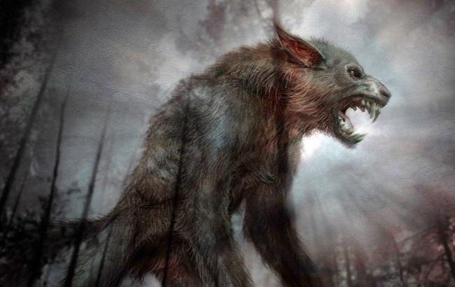 Чупакабра терроризирует жителей Прикамья