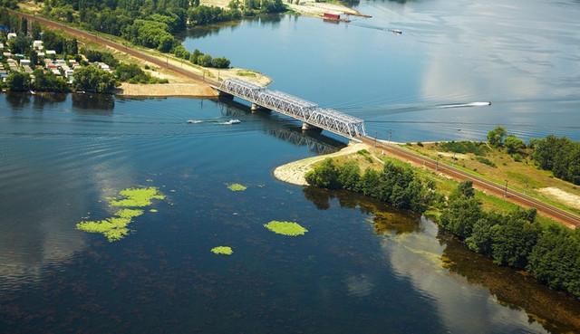 В Воронежском водохранилище запечатлели неизвестное науке существо
