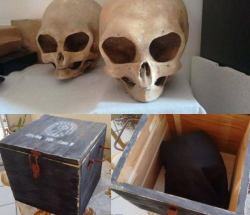 В России найден кейс с логотипом Аненербе и необычными черепами