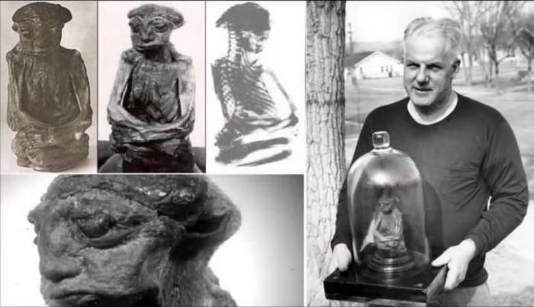 Загадочная мумия лепрекона затерялась в личных коллекциях