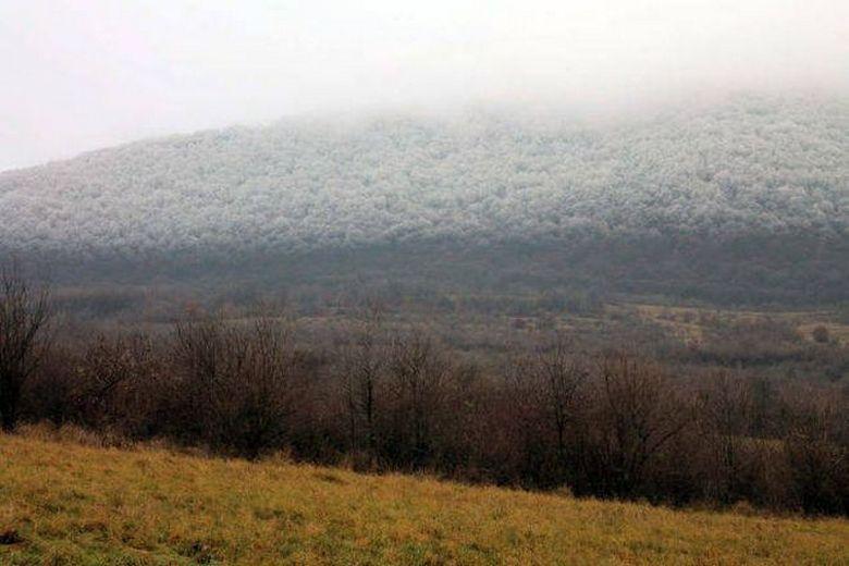 В Венгрии зафиксировали уникальное природное явление - «белую смерть» (6 фото)