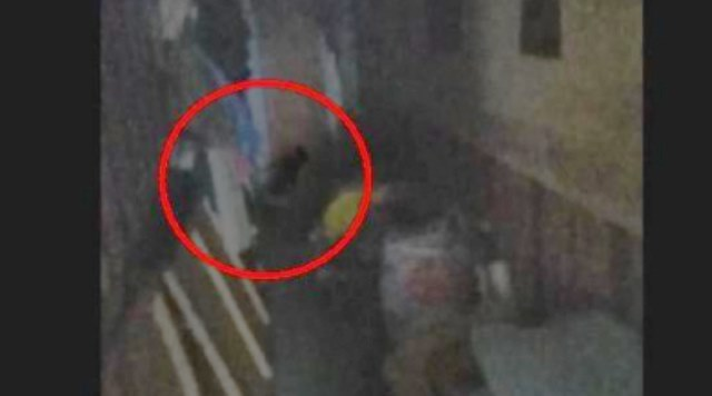 Жители Серпухова случайно засняли на видео домового или барабашку