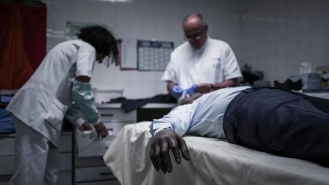 «Зомби реальны» – ученые обнаружили гены, остающиеся активными после смерти