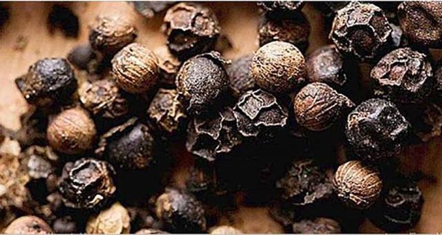 4 растения, которые содержат исцеляющие каннабиноиды, но не являются наркотическими средствами!