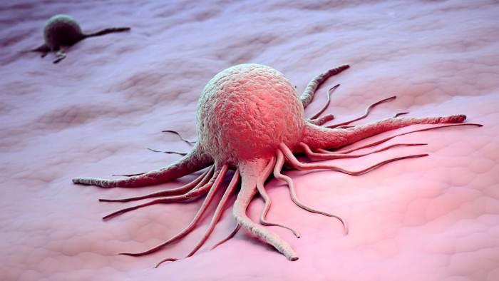 Древние люди оказались невосприимчивыми к раку
