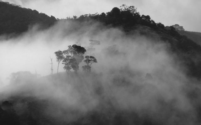 мистические истории, туман, история