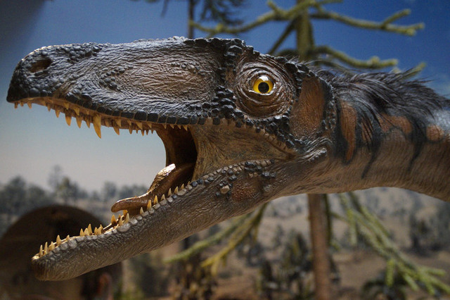 Динозавры, а затем и люди появились на Земле лишь благодаря слепой случайности