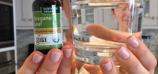 Масло орегано: электростанция для альтернативной медицины