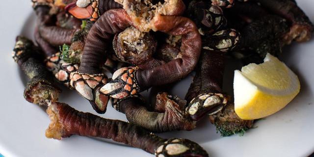 ракообразное, моллюск, деликатес, другие новости