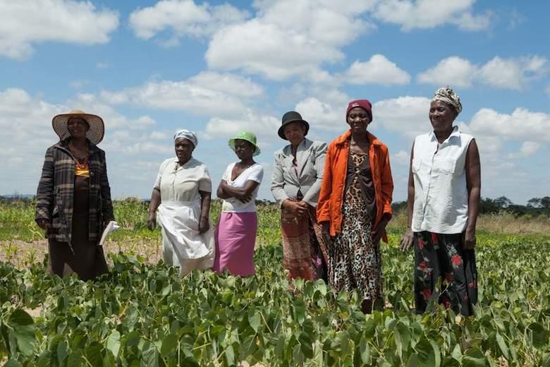 В Зимбабве снова разбушевались гоблины