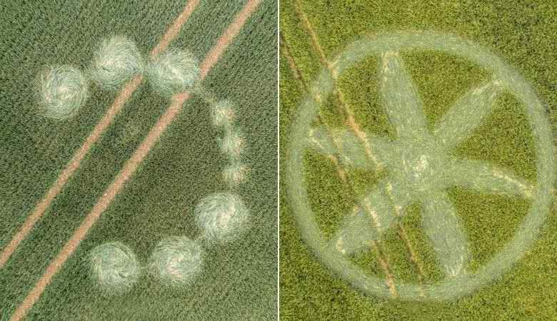 Новые круги на полях активно появляются в Англии