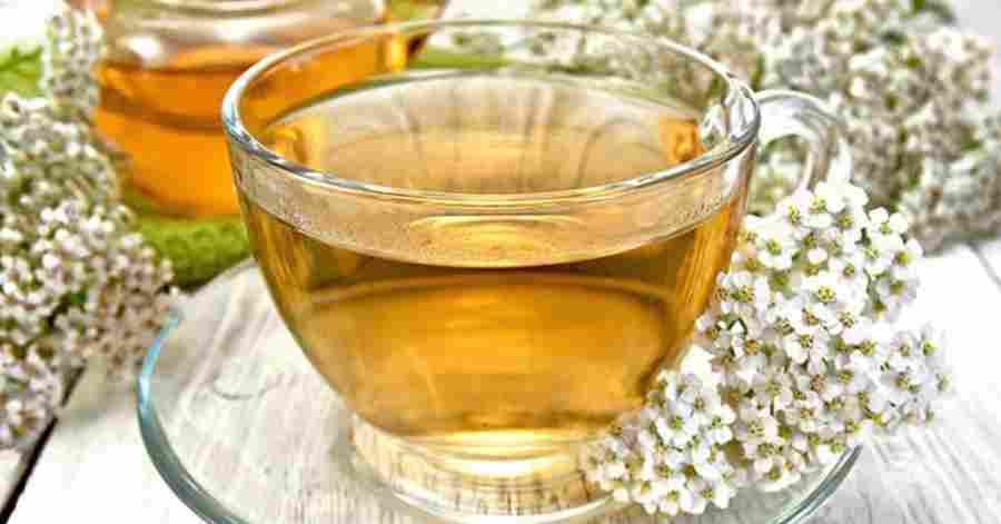 Травяной чай, который лечит гастрит, останавливает спазмы