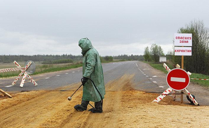 Как бубонная чума помогла России бороться с коронавирусом