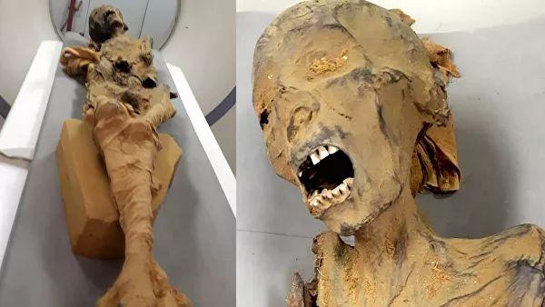 Ученые Раскрыли Загадочные Смерти Времен Фараонов