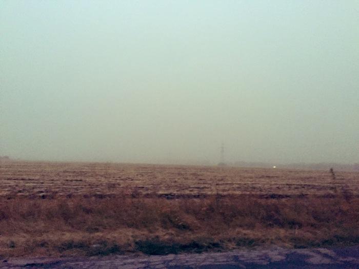 На Америку выпал радиоактивный пепел