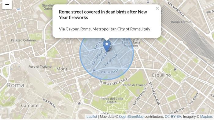 В ночь на Новый Год в Риме с неба попадали птицы