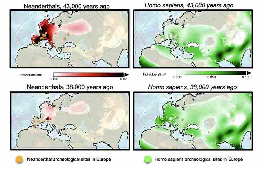 Война людей и неандертальцев. История величайшего конфликта в истории