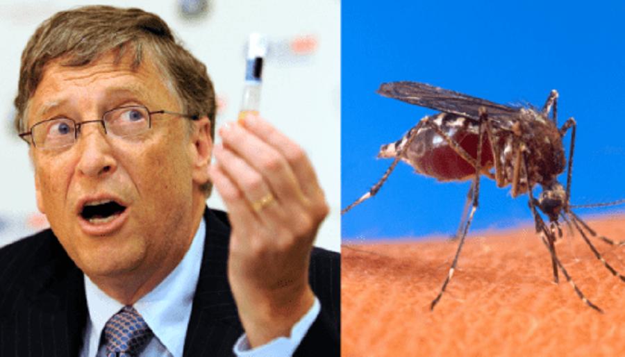 """Для вакцинации могут быть использованы """"живые летающие шприцы"""""""