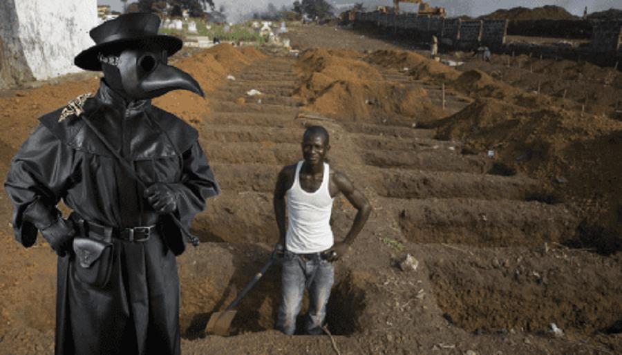 В Конго 520 человек заболели чумой. Новая пандемия?