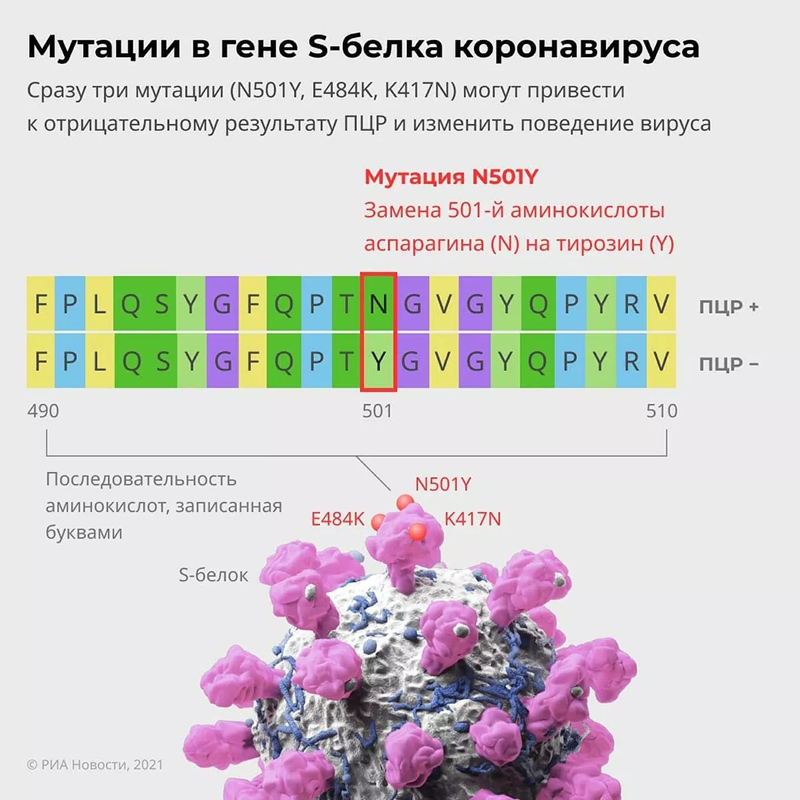 Обнаружен четвертый штамм SARS-CoV-2. Коронавирус становится опаснее?
