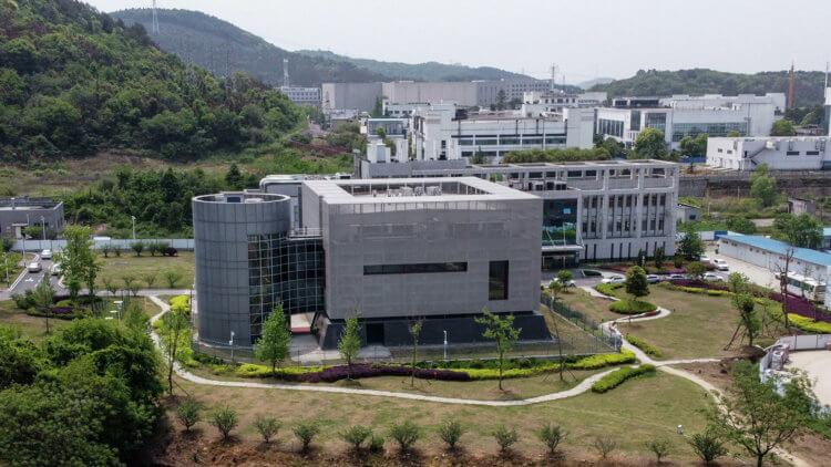 Что на самом произошло в Уханьском институте вирусологии?