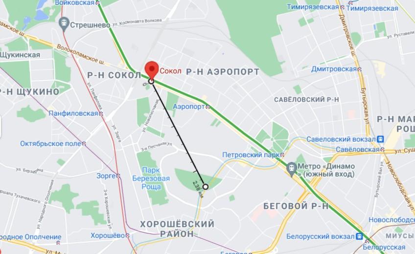 Глюк Матрицы. Птицы в Москве остановились
