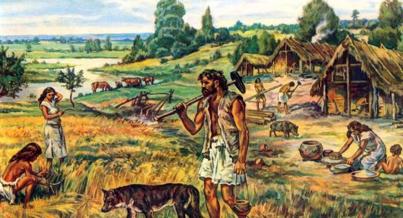 Иммунитет первых земледельцев был ослаблен, что позволило им выжить