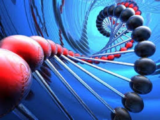 ДНК – хранилище или приемник?