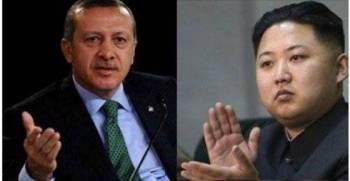 Северная Корея угрожает Турции ядерным ударом из-за России