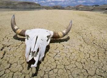 Зловещие «Долины смерти»