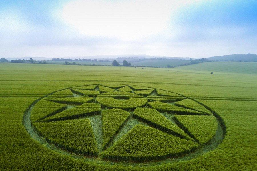 В английском графстве Уилтшир на пшеничном поле обнаружен новый круг