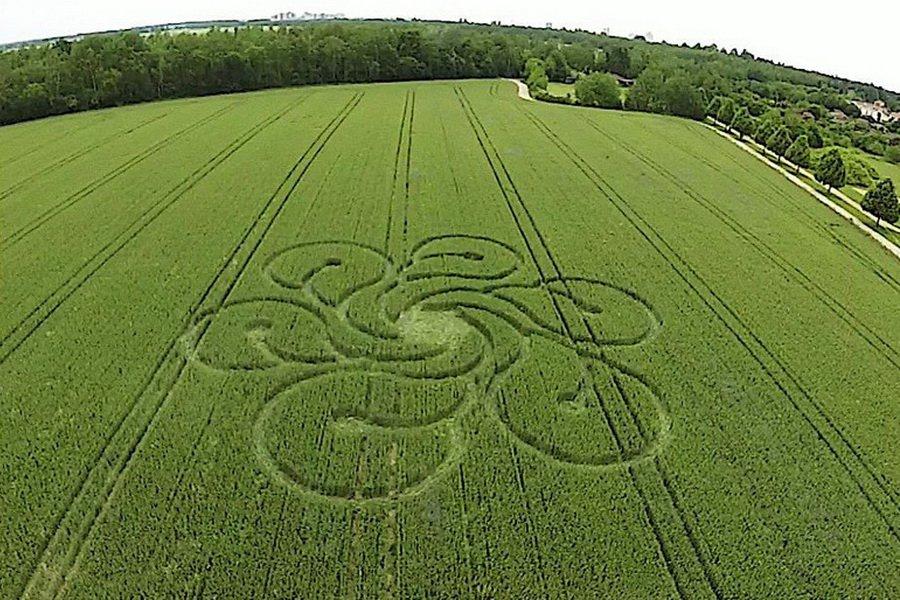 На окраине Берлина обнаружен новый круг на пшеничном поле