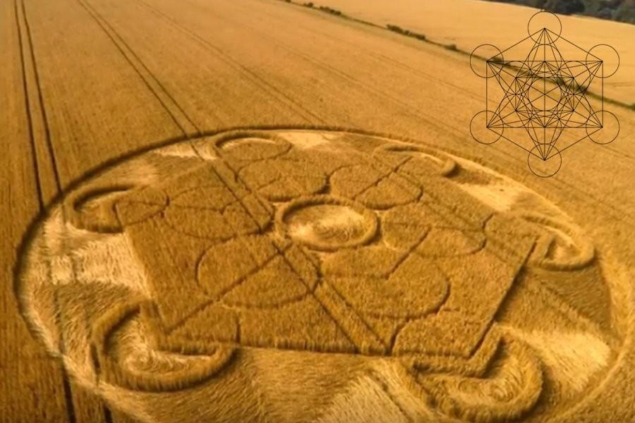 «Куб Метатрона» появился на поле в графстве Уилтшир