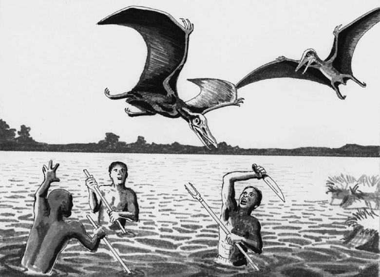 Африканский птерозавр или история о конгамато